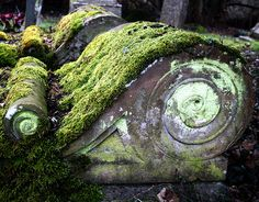 Old moss on a piece of architectural salvage  *sigh* Isn't it lovely?