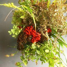 Viikonlopun kimppu on täynnä syksyn sävyjä.  Visiona oli tehdä harkitun-huolettomasti-harva kimppu mutta äkkiä sylissä olikin pieni metsä Tunnelmallista lauantai-iltaa. #sisustus #sisustusinspiraatio #homedecor #homeinterior #homeinspo #nature #wildflower #wildflowers #luonnonkukka #luonto #flowers #kukkakimppu #interior #interiors #inredning #myhome #koti #home