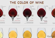 Ever wonder if a Chardonnay you're about to buy is going to be rich or lean? Believe it or not, the answer is right in front of your eyes. Wine colors unlock the secrets of style.