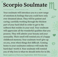 Scorpio Zodiac Facts, Scorpio Traits, Scorpio Love, Zodiac Signs Scorpio, Zodiac Sign Traits, Scorpio Quotes, Scorpio Horoscope, Zodiac Love, My Zodiac Sign