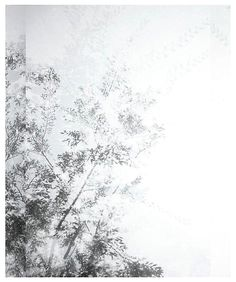 LUISA LAMBRI http://www.widewalls.ch/artist/luisa-lambri/ #contemporary #art #photography