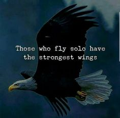 Those who fly solo have the strongest wings life quotes quotes quote life life lessons motivational quotes quotes and sayings life goals quotes to live by Fly Quotes, True Quotes, Words Quotes, Quotes To Live By, Best Quotes, Motivational Quotes, Inspirational Quotes, Qoutes, Sayings