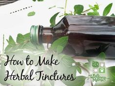 A tincture is a concentrated liquid form of an herb that is easy to make and easy to take. Tinctures preserve and concentrate the properties of the herb, making them more effective and longer lasting.  Alcohol based tinctures have a shelf life of several years and are easy to use when needed! I keep several tinctures on hand for my kids, as they can be used externally even on small children for relief from common problems.