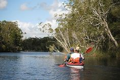 Set to the north of Brisbane and sitting pretty in between Noosa Heads and Rainbow Beach, Great Sandy National Park … Rainbow Beach, Fraser Island, Go Camping, Brisbane, Things To Do, National Parks, Australia, Things To Make, Todo List