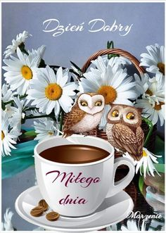 Good Night, Good Morning, Weekend Humor, Tea Cups, Owl, Pictures, Disney, Fotografia, Random Stuff