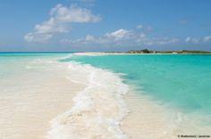Los Roques possède une grande variété d'oiseaux marins et une faune aquatique très riche, sa réputation n'est plus à faire. 90% des espèces de poissons et de coraux répertoriés dans la Caraïbes y sont présents ! Los Roques résiste à l'urbanisation : ici ni hôtels, ni routes goudronnées juste des maisons de pêcheurs transformées en de belles posadas. http://voyage.dune-snorkeling.fr/voyage/venezuela-los-roques/