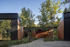 Ravine House by Wheeler Kearns Architects Dappled Light, Metal Siding, White Oak Floors, Walnut Dining Table, Timber Cladding, Marquise, Modern Exterior, Large Windows, Landscape Architecture