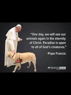 God Bless Pope Francis