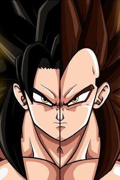 Goku and Vegeta - one in the same.