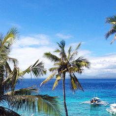 NEW BLOG POST ONLINE - top things to do in the Philippines. Check it out now ☀️ link in bio ☀️