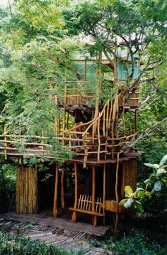 cabanes de jardin extérieur en bois dans les arbres