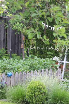 Gemüsegarten, Holzzaun, Kartoffeln Clematis, Lorenzo Ghiberti, The Tenant, Plants, Patio Tables, Wooden Fence, Compost, Plant, Planets