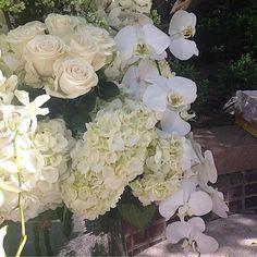 Mayflowers Floral Studio - http://ift.tt/2aW15Dl
