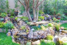 We keep several great photos that you can utilize as design ideas and/or for informational usage of Drought Tolerant Landscaping Ideas. Description from billallenmc.com. I searched for this on bing.com/images