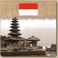 Indonésie: Bali Paradise Valley  S'élevant au-dessus de la jungle torride de l'île de Bali, c'est à Paradise Valley que les meilleurs fèves de cafés de la région sont récoltées à la main et mises au pilon le jour même. 454g (1 lb)  Prix: 11,45 $