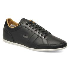 The Alisos 16 from Lacoste is a contemporary combination of perforated leather and suede. Great details like the press textured tongue, waxed laces and slim dot tread outsole add a quality feel while some neat sports styling and a burnished metal Lacoste crocodile finish this stylish shoe. http://www.himstr.com.au/lacoste-alisos-16-mens-shoes-black