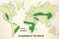 Veld In South Africa Map.10 Best South African Veld Images African Savannah Chat