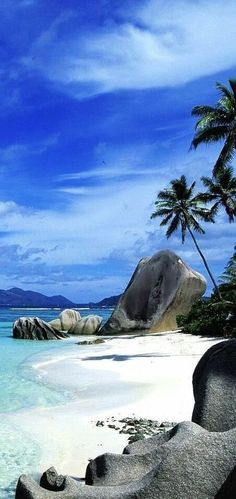 The Grand Anse beach in Seychelles. I wanna go here now!