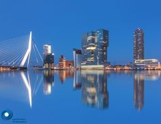 Rotterdam reflecties