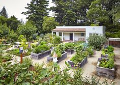 Vote for Your Favorite Edible Garden Project in the 2018 Considered Design Awards is part of Kitchen garden Landscape - Cast your vote every day for your favorite project in the Edible Garden category of the 2018 Gardenista Considered Design Awards Potager Garden, Garden Landscaping, Garden Paths, Landscaping Ideas, Transformers, Blooming Succulents, Vegetable Garden Design, Edible Garden, Urban Farming