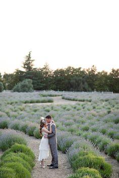 Lace & Lavender #bridal