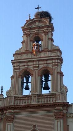 Espadaña de la Catedral de Huelva con nido de cigüeñas