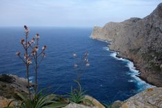 circuit majorque 1 semaine Espagne - Formentor budget road trip Parc National, Blog Voyage, Road Trip, Circuit, Water, Outdoor, Car Rental, Water Water, Outdoors
