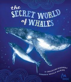 Summer Reading List: Summer Sports, Baseball, & the Outside World Summer Books, Summer Reading Lists, Whale Song, Book Reviews For Kids, The Secret World, Humpback Whale, Childrens Books, Whales, Vegetarian Kids