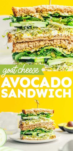 Give your body all of the greens with this Avocado Sandwich. It's made with cucumbers, sprouts, pesto, and goat cheese for maximum flavor and heartiness. It's a healthy vegetarian lunch that's perfect for meal prepping, picnics, or family lunch! Best Vegetarian Sandwiches, Avocado Sandwich Recipes, Veggie Sandwich, Vegetarian Lunch, Healthy Recipes On A Budget, Vegetarian Recipes Easy, Clean Eating Recipes, Lunch Recipes, Healthy Food
