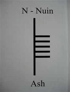 N is for Nion, sometimes called Nuin, which is connected to the Ash tree. Ash is one of three trees which were sacred to the Druids (Ash, Oa...