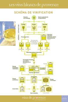Schémas de Vinification - Vins blancs - Vins de Provence - Cuisine et vins
