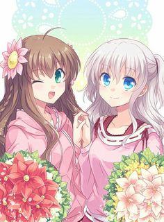 Nao y Charlotte y Rewrite Anime One, Anime Manga, Anime Girls, Charlotte Tomori, Neko, Otaku, Manga Cute, Couple Romance, Manga Pictures