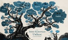 Linguists have often used trees and branches as metaphors to explain and map the connections between language groups. Click on the image to enlarge  Photograph: Minna Sundberg