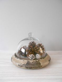 R E S E R V E D til the 16th...large rustic glass cloche with wooden base.
