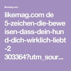likemag.com de 5-zeichen-die-beweisen-dass-dein-hund-dich-wirklich-liebt-2 303364?utm_source=ilt&utm_campaign=tp&utm_medium=fb