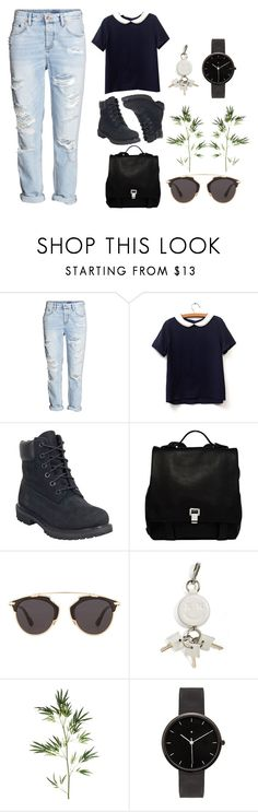 """""""Untitled #438"""" by ashola18 ❤ liked on Polyvore featuring H&M, Timberland, Proenza Schouler, Christian Dior, Alexander Wang, Pier 1 Imports, I Love Ugly, Dior, timberland and shein"""