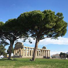 Scavi Archeologici di Paestum a Salerno