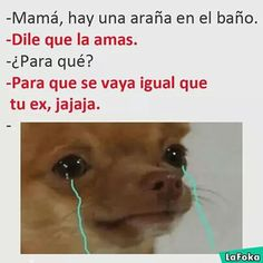 New Ideas Memes Sad Friendzone Funny Spanish Memes, Spanish Humor, Stupid Memes, Funny Jokes, Funny Images, Funny Pictures, Mexican Memes, Drama Memes, New Memes