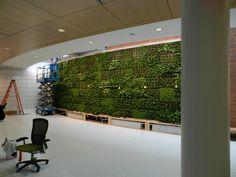Lancaster General Barshinger Cancer Institute Green Wall | Greener on the Inside