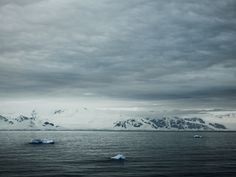 Antarctica # 3988 by Santiago Vanegas - saw this at the airport in Atlanta en route back to NYC.