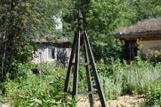 Gardens - So I Was Thinking Paths, How To Find Out, Photo Galleries, Gardens, Gallery, World, Roof Rack, Outdoor Gardens, The World
