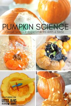 Pumpkin Science Experiments for Fall Science and Fall STEM Projects Preschool…