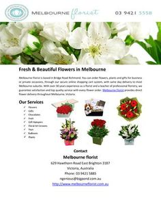 Melbourne Florist is based in Bridge Road Richmond. You can order flowers, plants and gifts for business or private occasions, through our secure online shopping cart system, with same day delivery to most Melbourne suburbs. Richmond Bridge, Melbourne Suburbs, Flower Delivery Service, Road Photography, Order Flowers Online, Brighton, Beautiful Flowers, Road Logo, Cart