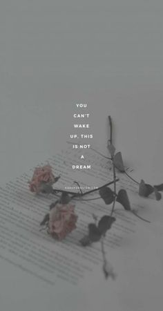 iPhone Wallpaper Quotes from Uploaded by user Tumblr Quotes, Lyric Quotes, Girl Quotes, Lyrics, Qoutes, Tumblr Wallpaper, Wallpaper Quotes, Wallpaper Backgrounds, Psycho Wallpaper