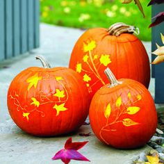 How to carve elegant pumpkins | Glowing vines | Sunset.com