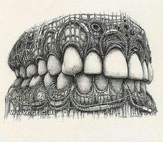 teeth by peter gric Dentist Art, Teeth Drawing, Dental Anatomy, Dental Technician, Dental Life, Dental Design, Medical Illustration, Dental Hygienist, Anatomy Art