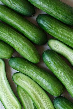 Cucumbers by Renáta Dobránska | Stocksy United