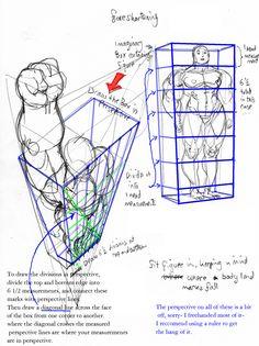 anatomy: foreshortening by *Jebriodo on deviantART