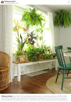 Indoor Plant Decor ideas are fun for people of all ages. You don't have to have a huge garden or your Indoor Plant Decor Ideas are perfect for small garden arrangements. There are many different plants that are suitable for… Continue Reading → Window Plants, Hanging Plants, Plants Indoor, Plant Window Shelf, Indoor Window Garden, Window Table, Indoor Gardening, Organic Gardening, Room With Plants