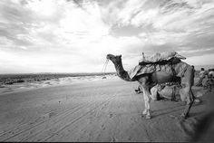 009 Jaisalmer - Rajasthan - India, agosto 2007
